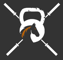 Stone Brook Strength Logo